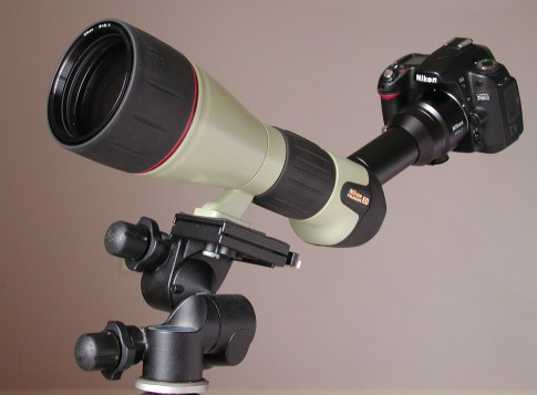 Fieldscope-D80
